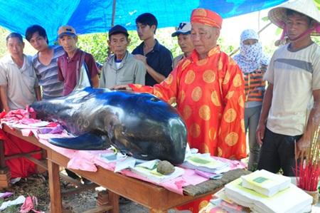 Bô lão mặc trang phục truyền thống để tiến hành nghi lễ cúng cá Ông