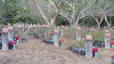 Những ngôi mộ chiến sĩ cách mạng trong nghĩa trang Hàng Dương luôn có khách viếng thăm.