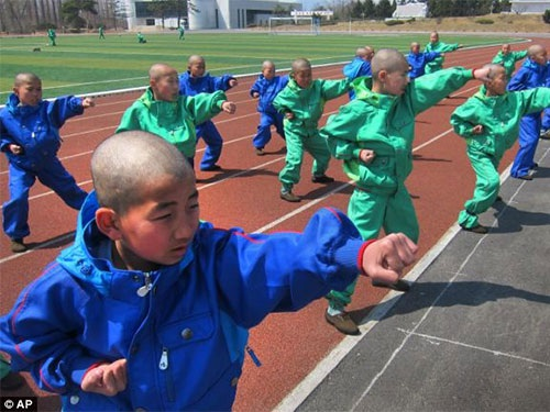 Các bé cạo tóc gọn gàng và luyện tập taekwondo rất nghiêm túc tại