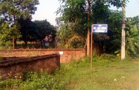 Trang trại dê - lợn rừng năm trên đất dự án Đại học Quốc gia Hà Nội.