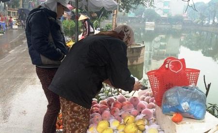 Hoa quả Trung Quốc có mặt khắp mọi nơi