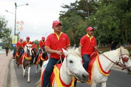 """Các """"chàng"""" và """"nàng""""ngựa duyên dáng với yếm đỏ vàng nổi bật"""