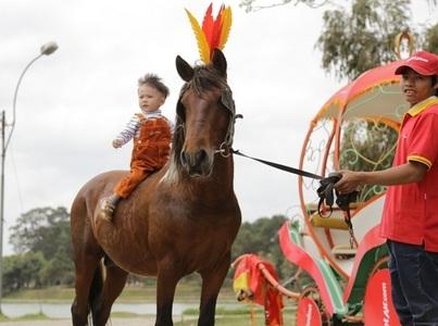 Em bé thích thú khi được cưỡi ngựa