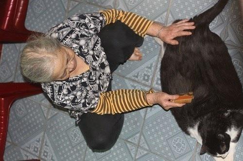 Bà Nga và chú mèo khủng