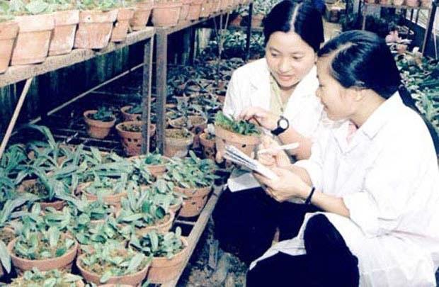 Nông nghiệp Việt Nam khát nhân lực