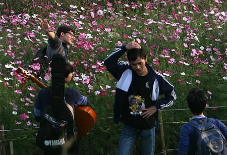 Ngỡ ngàng vườn hoa nhỏ bên luống đào Nhật Tân  - 14