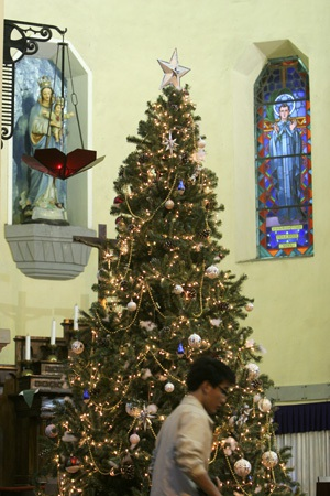 Một người đang trang trí cây thông lớn bên trong nhà thờ Cửa Bắc.