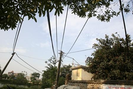 Đập ngay vào mắt khi đến thôn Ngọc Than là đường ống dẫn nước ao mắc chi chít trên cột điện.