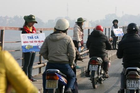 Bắt đầu chia nhau đứng dọc suốt chiều dài cầu để xin rác.
