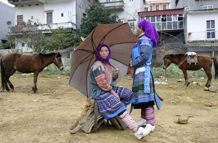 Những phụ nữ Mông đi chợ bán ngựa.