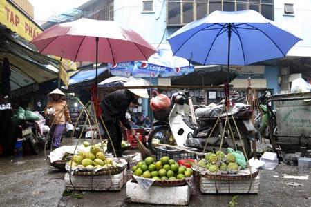 Một gánh quả được che ô tránh mưa.