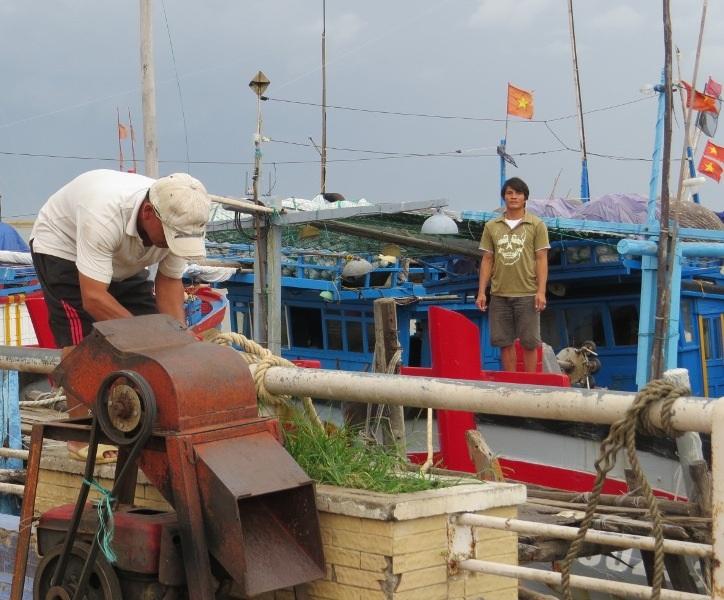 Ngư dân TP Tuy Hòa (Phú Yên) neo đậu tàu thuyền an toàn