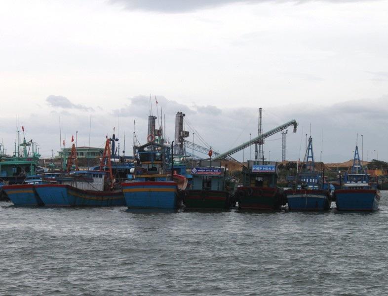 Các tàu thuyền ngư dân tỉnh Bình Định vào nơi tránh trú siêu bão