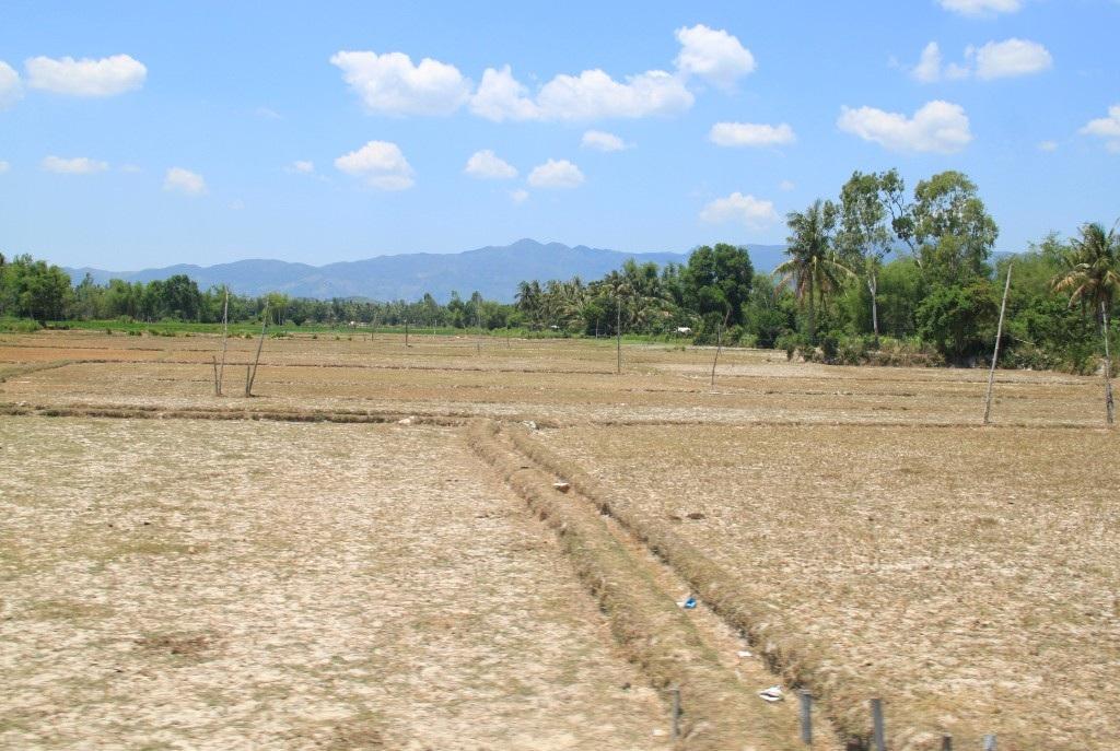 Nhiều diện tích bỏ hoang vì không có nước sản xuất