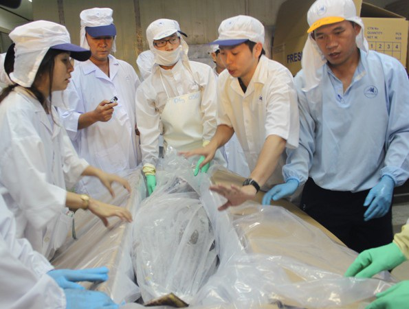 Trước đó, cá ngừ đại dượng do ngư dân Bình Định đã 2 lần đi máy bay qua bán đấu giá tại Nhật Bản