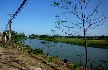 Sông Chợ Cũi, đoạn chảy qua làng Phú Chiêm (xã Điện Phương)