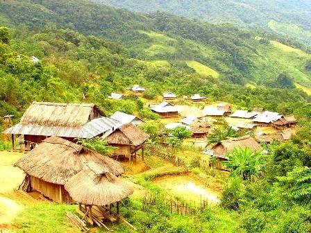 Đề nghị thu hồi đất trồng rừng của doanh nghiệp Trung Quốc