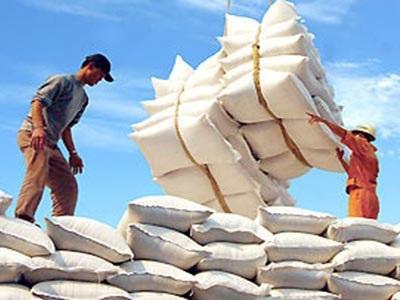 Từ 1/10, không có giấy chứng nhận sẽ không được xuất khẩu gạo - 1