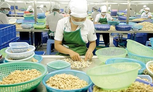 Nhiều DN rơi vào cảnh thiếu hụt lao động trầm trọng do lỡ cắt giảm nhân sự mạnh tay.