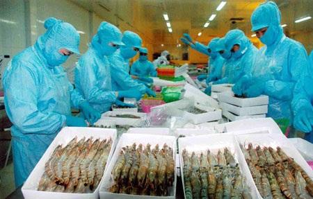Thêm gánh nặng cho xuất khẩu tôm Việt