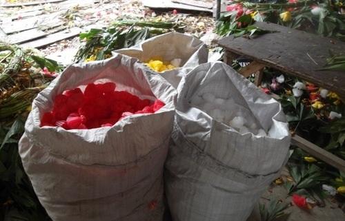 Những mút hoa được rút ra, phân loại theo màu sắc