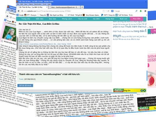 Các bài viết bêu xấu doanh nghiệp trên trang mạng Webtretho.