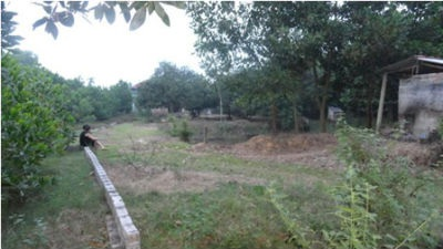 Những lô đất ở xã Yên Bài từng được nhiều người săn đón, giờ rao bán rẻ chẳng có ai mua