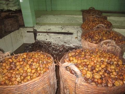 Mứt dừa làm từ dừa phế thải, ômai lẫn trong khói bụi