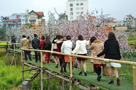 Các vườn cảnh ở Nhật Tân, Quảng Bá lúc nào cũng nườm nượp khách ra vào.