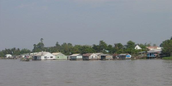 Một góc cù lao Tân Lộc yên bình giữa sông Hậu