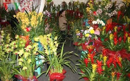 Các loại hoa được bày bán tại chợ