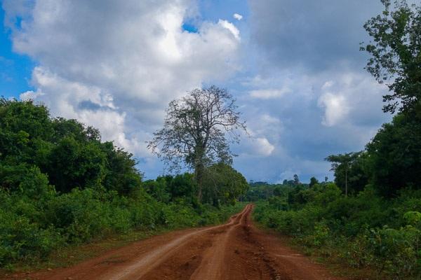 Trên đường đi, bạn có thể bị lạc đường và bắt gặp những cảnh đẹp vô cùng nguyên sơ.