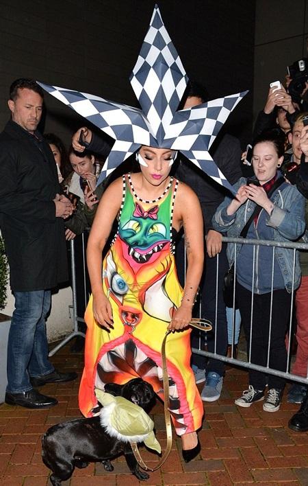 Cả Lady Gaga và chú cún của cô đều thu hút sự chú ý của các fan.