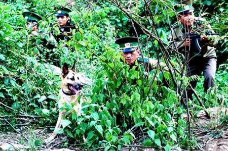 Bộ đội biên phòng mật phục ma túy trên một địa bàn giáp biên giới.
