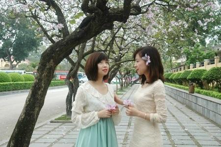 Màu hoa tô điểm nét duyên thầm người thiếu nữ