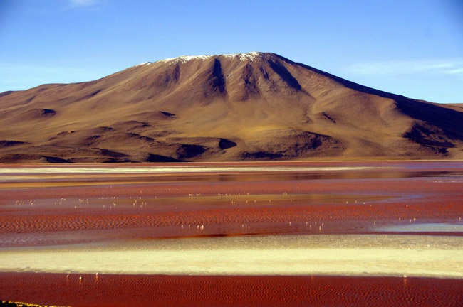 """Hồ Laguna Colorada, Bolivia được mệnh danh là """"Hồ đỏ"""" với màu nước đỏ như máu."""
