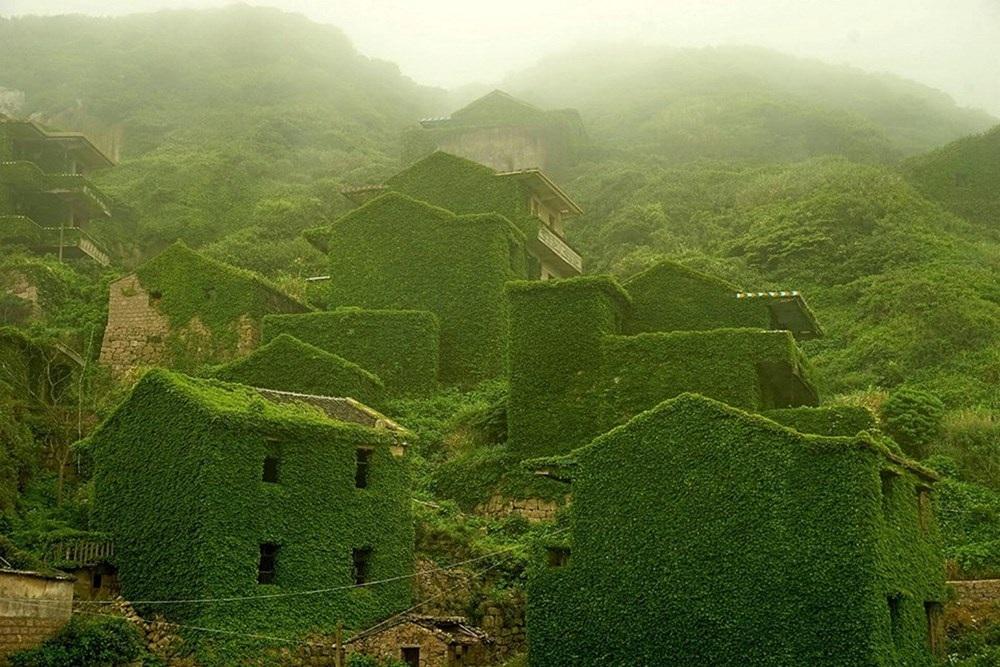 Lạc vào những ngôi nhà xanh mướt như trong truyện cổ tích