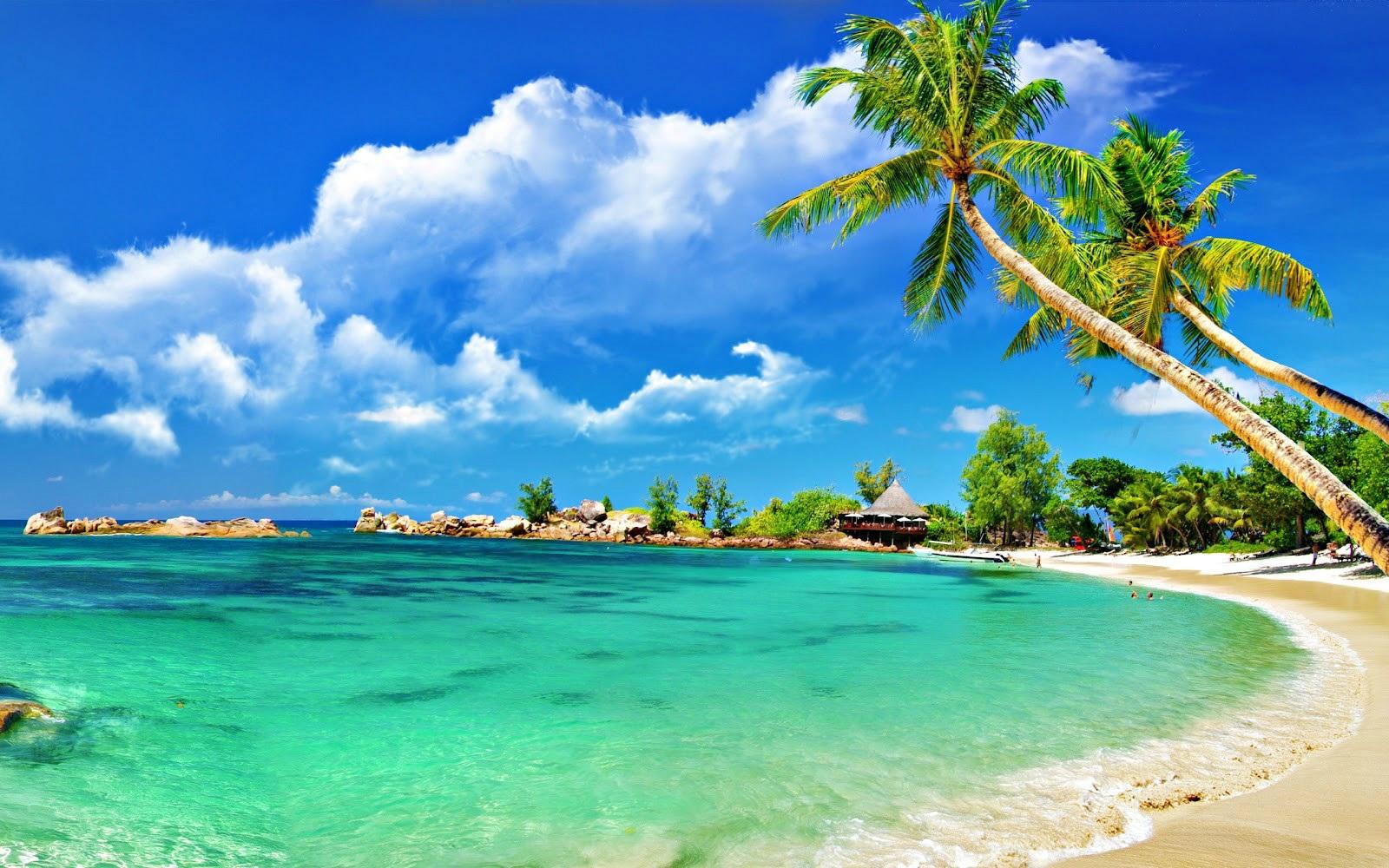Biển luôn là sự lựa chọn lý tưởng của du khách trong những ngày hè.