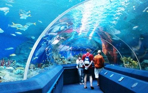 Không đi thế giới nước quả là thiếu xót khi đến Pattaya.