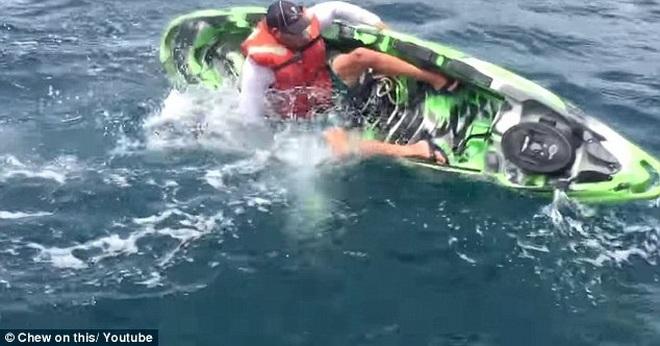 Con cá mập lao vào chiếc thuyền của Ben.