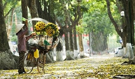 Thủ đô Hà Nội - Việt Nam (nguồn ảnh: Internet)