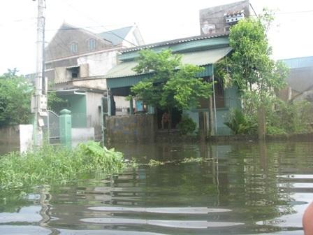 3 người thiệt mạng, lốc xoáy tốc mái, mưa ngập hàng trăm nhà dân - 1