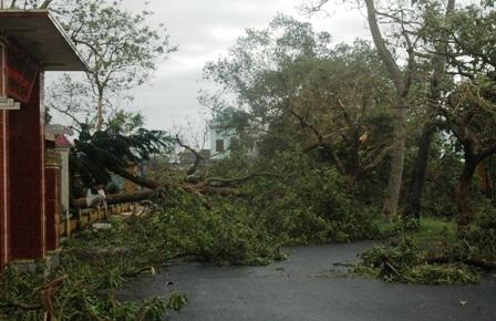 Bão tàn phá nhiềuđịa phương tại NamĐịnh.