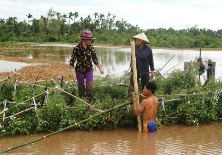 Hàng nghìn ha hoa màu, lúa của người dân bị ngập chìm trong nước.
