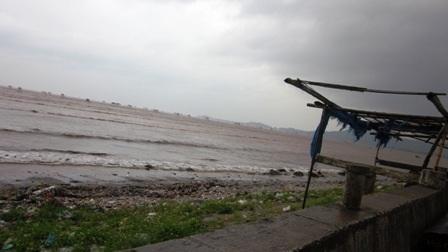 Khoảng 8 giờ sáng nay, tại huyện Hậu Lộc, mưa bắt đầu nặng hạt, gió cũng giật mạnh dần lên.