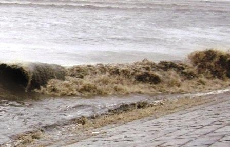 Đến 12 giờ trưa nay, tại huyện Hậu Lộc mưa đã ngớt, tuy nhiên gió bắt đầu giật mạnh lên.