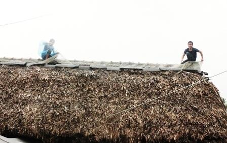 Người dân huyện Tĩnh Gia chằng chống nhà cửa để đối phó với cơn bão số 8.
