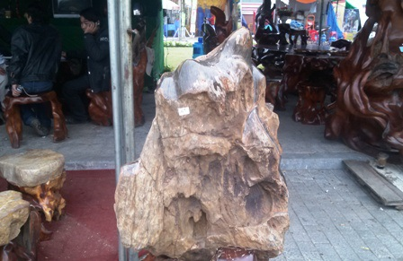 Sản phẩm gỗ hoá thạch.