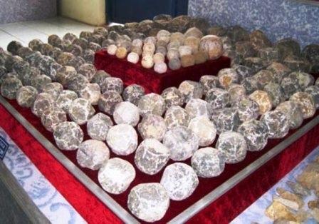 Đạn đá cổ được tìm thấy ở Thành nhà Hồ.