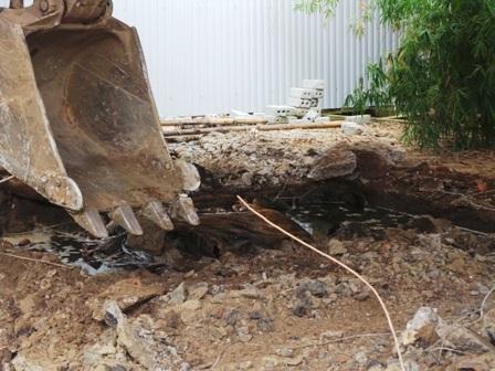 Thời gian thực hiện khắc phục ô nhiễm môi trường tại Cty Thanh Thái được điều chỉnh thêm 60 ngày.
